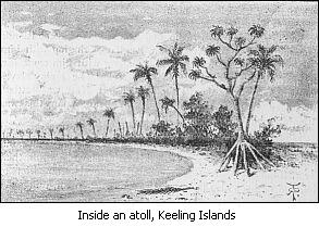 Image result for tahiti when charles darwin went